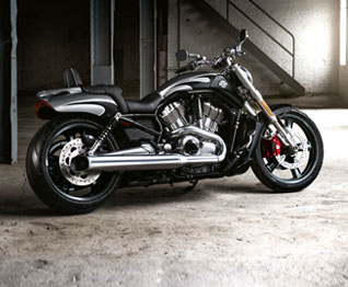 V-ROD Muscle