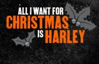 Christmas Gift Ideas from Harley-Heaven