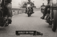 Harley on Tour 2016.