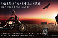 NEW EAGLE YEAR SPECIAL 2DAYS