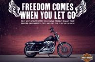 FREEDOM COMES WHEN YOU LET GO