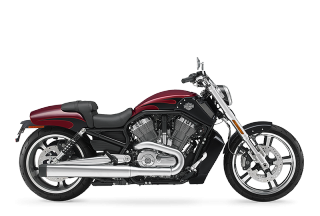 V-Rod Muscle™ - 2017 Motorcycles