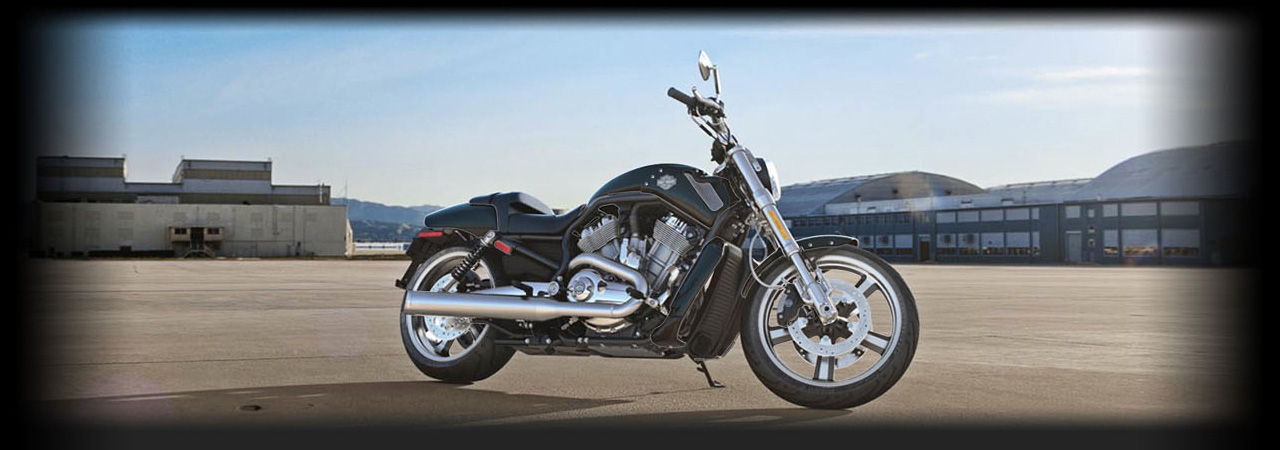 V-Rod Muscle®