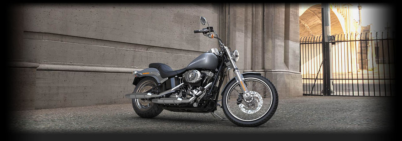 Softail<sup>®</sup> Standard