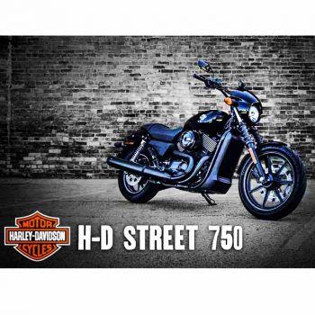 Новая модель Harley-Davidson - Street 750 будет разыграна в конце года в Киеве