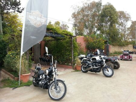 HARLEY-DAVIDSON® - COME OUT & PLAY