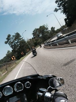 H-D SOFTAIL FAMILY RIDE 2015