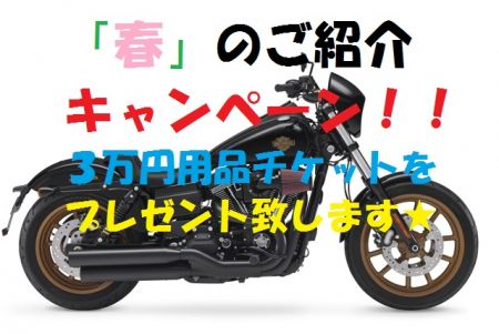 USALEO、春のご紹介キャンペーンです!!