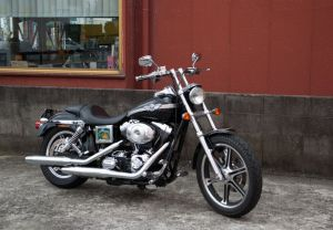 Inspiration Gallery - FXDL Low Rider