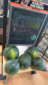 真夏の成約キャンペーン!!