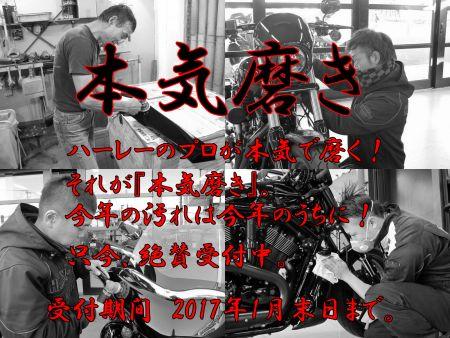 サービスキャンペーン『本気磨き』スタート!