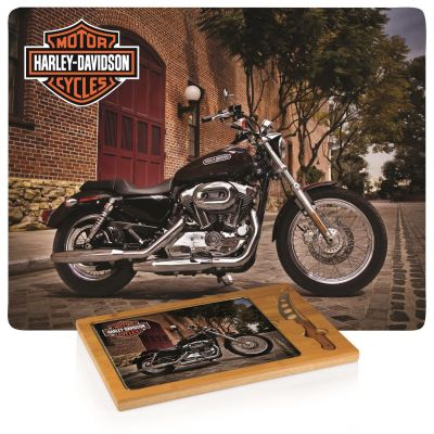 Harley-Davidson Icon Board