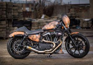 Harley-Davidson® Sportster® XL883N