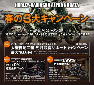 H-D<アルファ新潟オリジナル企画>免許取得サポートキャンペーン