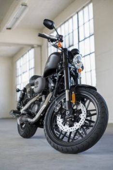 New Roadster™ is added to the Sportster® family