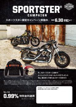 スポーツスター特別キャンペーン ハーフアップローン0.99%特別低金利!!