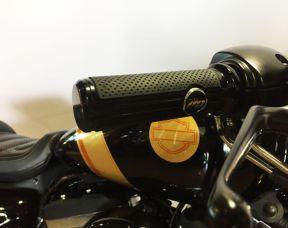 2016 Roadster™ Custom