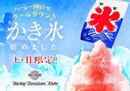 11日、12日、13日はハーレー神戸でかき氷食べ放題♬