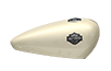 Harley-Davidson Street<sup>®</sup> 500 - Bonneville Salt Pearl