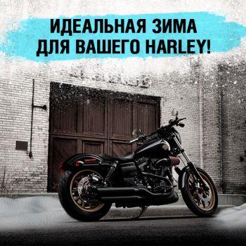 Идеальная зима для вашего Harley!