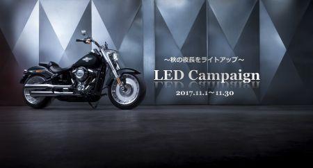 LEDキャンペーン開始!あなたの愛車をライトアップ!!