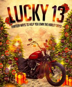 Thirteen Ways To Own The Harley Days