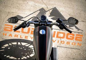 Blue Ridge Harley-Davidson©