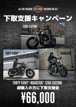 XL1200モデルをご検討の方にBIGチャンス到来!!