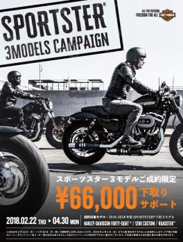 スポーツスター3モデル キャンペーン!!