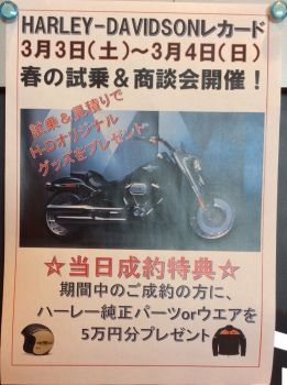 春の試乗&商談会開催!