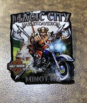 Magic City Viking Pin