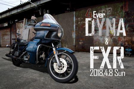 4Ever DYNA & FXR