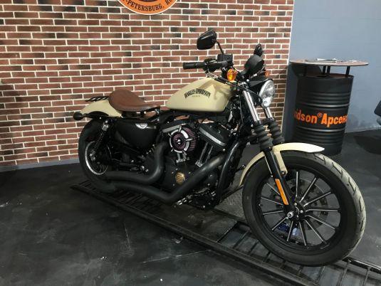 Harley-Davidson XL883N 2014