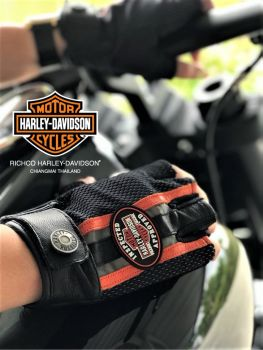 Harley-Davidson® Riding Gloves (April 2018)
