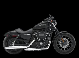 Iron 883™ - 2013 Motorcycles