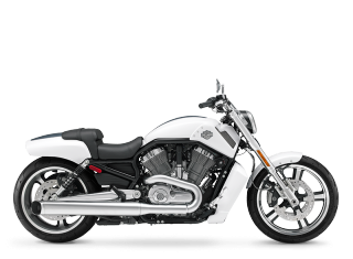 V-Rod Muscle® - 2011 Motorcycles