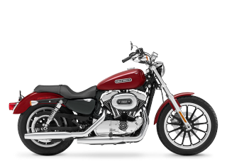 Sportster® 1200 Low - 2010 Motorcycles