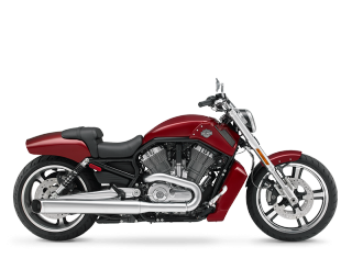 V-Rod Muscle® - 2010 Motorcycles