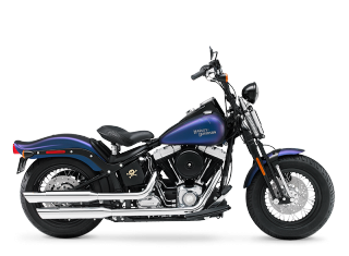 Softail® Cross Bones™ - 2010 Motorcycles