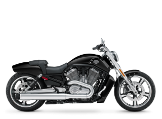 V-Rod Muscle® - 2009 Motorcycles