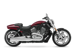 V-Rod Muscle<sup>®</sup> - 2017 Motorcycles