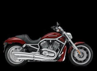 V-Rod® - 2009 Motorcycles