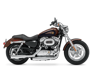1200 Custom Anniversary Edition - 2013 Motorcycles