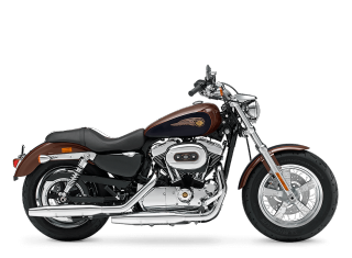 1200 Custom 110th Anniversary Edition - 2013 Motorcycles