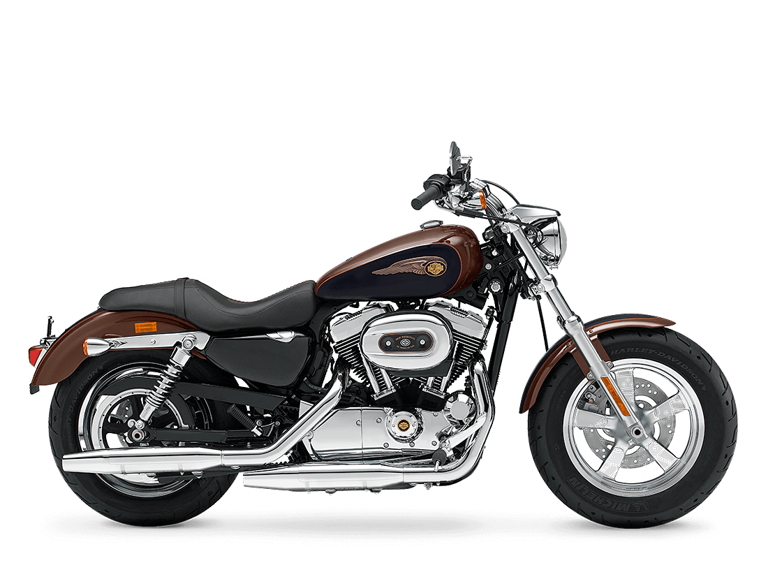 1200 Custom 110th Anniversary Edition