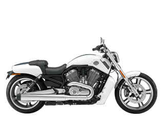 V-Rod Muscle<sup>®</sup> - 2011 Motorcycles