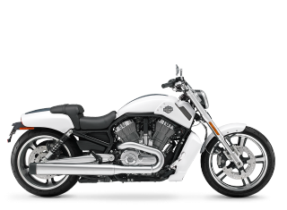 V-Rod Muscle<sup>®</sup> - 2013 Motorcycles