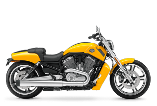 V-Rod Muscle<sup>®</sup> - 2012 Motorcycles