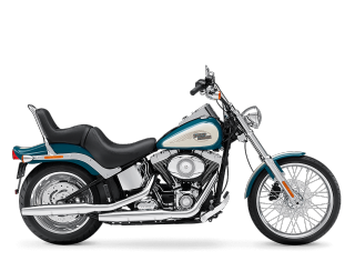 Softail® Custom - 2009 Motorcycles