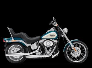 Softail® Custom - 2009 Motorcycles